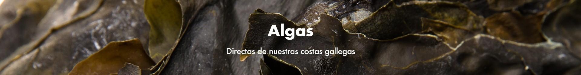 Algas · La vida a granel